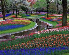 Cute Keukenhof Park near Amsterdam