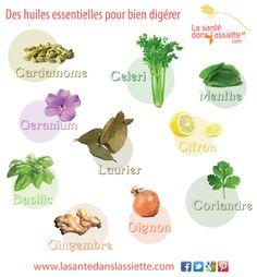 Les huiles essentielles qui favorisent la digestion Sante Plus, Nutrition Tips, Healthy Life, Healthy Recipes, Diet, Plants, Magazine, Google, Herbal Medicine