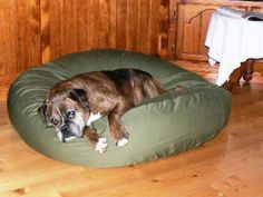 Bess is our faorite Boxer, sadly no loger with us. She is from Penshurst in Victoria Pet Beds, Dog Bed, Large Dogs, Boxer, Victoria, Pets, Pictures, Animals, Animais