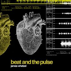 Beat and the Pulse cover art