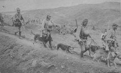 山岳地帯を進む日本の軍用犬班 帝國ノ犬達-軍用犬