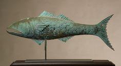 Fiske Vane 1
