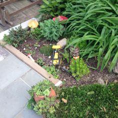 working on my rock garden!