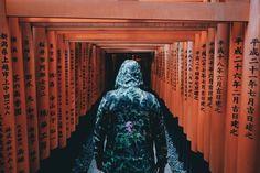京都に来ている外国人の写真が人気