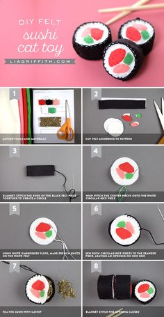 Cats Toys Ideas - Learn how to sew up some felt sushi to create play food for your little ones, or turn it into a DIY cat toy by adding catnip - Ideal toys for small cats