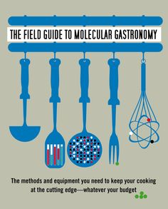 Field Guide to Molecular Gastronomy