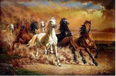 "Modern Huge Wall Art Oil Painting on Canvas""Majestic Horse"" No Framed Seven Horses Painting, Horse Canvas Painting, Canvas Paintings For Sale, Oil Painting Abstract, Canvas Art, Horse Paintings, Art Painting Tools, Painting Frames, Wild Horses Running"