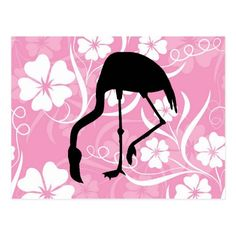 Flamingo in Hibiscus Flowers Pastel Pink White Postcard