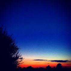 A beautiful vibrant orange sunset silhouettes the shrub and the horizon against the sky's deepening blue. #sunset #sky #beautiful #sunrise #orange #english #silhouette #harmony #art #design #landscape #bucolic #pastoral #english #shrub #skyline