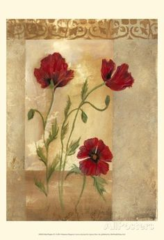 Red Poppies IV Prints by Marianne D. Cuozzo at AllPosters.com