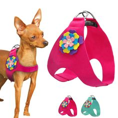 Dog Accesories, Pet Accessories, Diy Dog Toys, Dog Clothes Patterns, Dog Items, Small Puppies, Animal Fashion, Pet Puppy, Pet Grooming