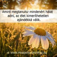 Hálát adok a mai napért. Amint megtanulsz mindenért hálát adni, az élet kimeríthetetlen ajándékká válik. Nincs olyan pillanata, ami ne vinne előbbre. Nincs olyan eseménye, ami ne a fejlődésedet szolgálná. Minden azt szolgálja, hogy felismerd: ezért vagy itt. A jutalom pedig sokszorosa az elképzelhetőnek. Így szeretlek, Élet!  ⚜ Ho'oponoponoWay Magyarország ⚜ www.HooponoponoWay.hu