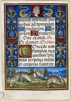Bas-de-page scene of a hound chasing a rabbit, with Bona's name 'Diva Bona' in the full border, Add MS 34294, f. 122v