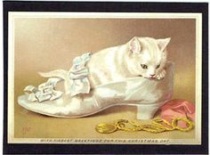 HELENA-MAGUIRE-ARTIST-SIGNED-VICTORIAN-CHRISTMAS-CARD-PRETTY-WHITE-CAT-IN-SHOE