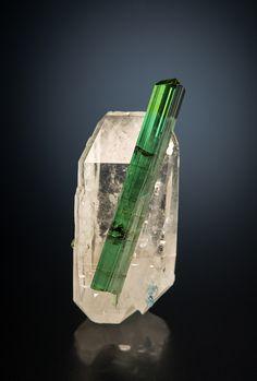 Elbaite on Quartz - São Pedro Mine, Malacacheta, Minas Gerais, Brazil Size: 1.4 × 3.2 × 1.0 cm