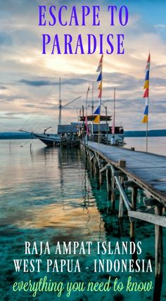 Raja Ampat Islands- Guide to Paradise. Raja Ampat, Indonesia – What's All the Fuss About? Fun Facts about Raja Ampat. Best Time to Visit and much more. Click to read the full adventure travel blog post at http://www.divergenttravelers.com/raja-ampat-islands-indonesia/