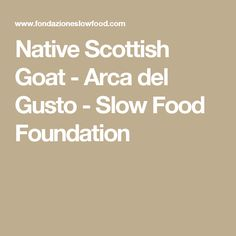 Native Scottish Goat