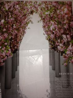 Cherry blossom in church