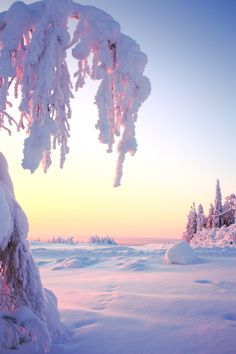 Winter iPhone Wallpaper iPhone Wallpaper, Schnee Wallpaper, iPhone Wallpaper w . Winter Szenen, I Love Winter, Winter Magic, Winter Christmas, Winter Travel, Winter Sunset, Christmas Morning, Winter White, Snow Scenes