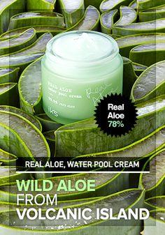 THE HUB OF KOREAN BEAUTY SECRETS - wishtrend, Real Aloe