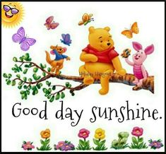 It's a good day everyday with Pooh and Friends Pooh And Piglet Quotes, Tigger And Pooh, Winne The Pooh, Cute Winnie The Pooh, Winnie The Pooh Friends, Pooh Bear, Good Morning Greetings, Good Morning Wishes, Winnie The Pooh Pictures