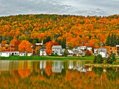 A gorgeous #FallinPA scene from Hamlin Lake in Smethport, Pa.