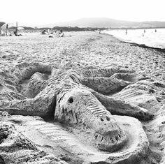 Coccodrillo di Sabbia su una spiaggia sarda