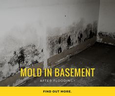 9 best mold remediation images water damage cleaning mold get rh pinterest com