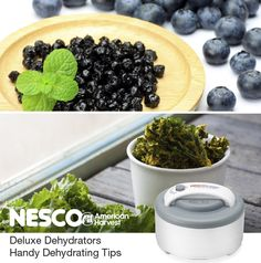 NESCO®: Roaster Ovens | Dehydrators | Small Appliances | Jerky Spices | Kale and Blueberry Dehydrating tips