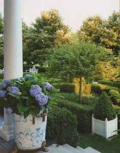 Blue hydrangeas & manicured hedges #BHGSummer
