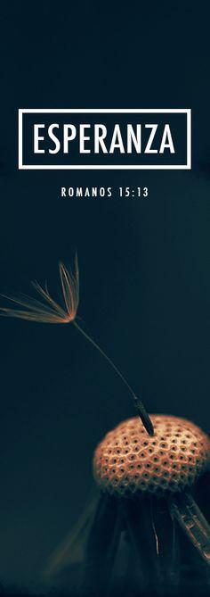 Romanos 15:13 Y el Dios de esperanza os llene de todo gozo y paz en el creer, para que abundéis en esperanza por el poder del Espíritu Santo. .