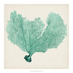 The perfect accent piece, the Bassett Mirror Sea Fan VI Wall Art adds a hint of whimsy to your home. It features a beautifully detailed green sea. Glass Wall Art, Framed Wall Art, Framed Art Prints, Canvas Wall Art, Painting Frames, Painting Prints, Paintings, Gouts Et Couleurs, Avatar