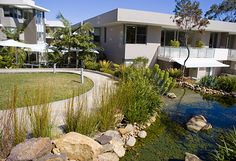 Waterbrook at Greenwich // Taylor Brammer Landscape Architects Sydney City, Residential Complex, Landscape Architects, Senior Living, Mansions, House Styles, Outdoor, Home, Outdoors