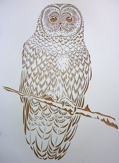 STENCIL PREP FOR NYC AND LA | The Endangered Spotted Owl... | Blog | Flox
