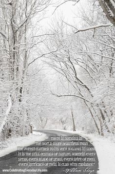 Beautiful Snow! {Inspiring Quote} - Celebrating everyday life with Jennifer Carroll