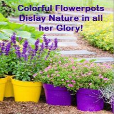 Large Plastic Flower Pots for Outdoor Plants