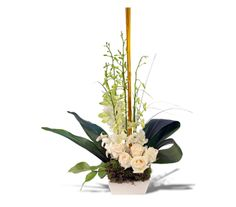 Elegant and stylish, our Light Summer Night arrangement contains dendro orchids and roses, highlighted with bamboo sticks surround by aspidistra leaves, moss and bear grass accents.    CC6340