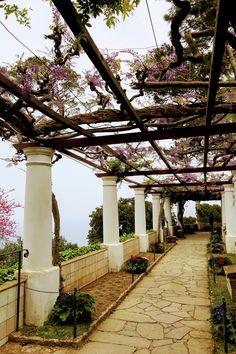 Capri Island, Visit Italy, Italy Travel, Pergola, Sidewalk, Villa, Outdoor Structures, San, Italy Destinations