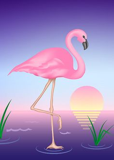 Flamingo Tattoo Art | Tattoos of Florida or Florida related? - Yahoo! Answers