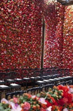 Wah. Wall of flowers!! LOVE! Dior Show (from The Buzz Blog Diane James)