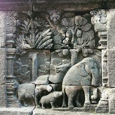 Happy elephants and animals in the stone jungle, relief at Borobudur.   #Borobudur #java #yogyakarta #stonerelief #temple #buddhisttemples #nushyinjava #Indonesia