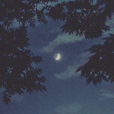 Ideas Dark Wood Forest Photography For 2019 Night Aesthetic, Aesthetic Art, Aesthetic Anime, Aesthetic Pictures, Blue Aesthetic Grunge, Aesthetic Photography Grunge, Arte Indie, Two Worlds, You Are My Moon