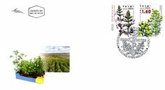 2008 Medicinal Herbs and Spices   First Day Cover