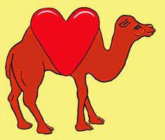 davidwithdrawn One - Google+ #love #camel