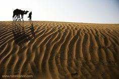 A Journey Through The Thal Desert Pakistan