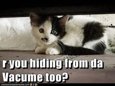 r you hiding from da Vacume too?