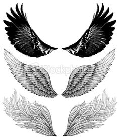 Eagle Wing Tattoos, Feather Tattoos, Forearm Tattoos, Tribal Tattoos, Arm Band Tattoo, Celtic Tattoos, Sleeve Tattoos, Dark Art Drawings, Tattoo Drawings