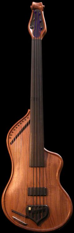 Godfrey Guitars, Bass Veena. Incredible instruments.