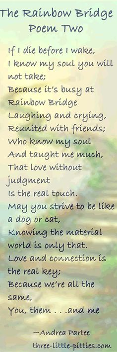 60 Best RAINBOW BRIDGE POEM Images Loss Of Pet Animales Dog New Losing A Loved One Quote
