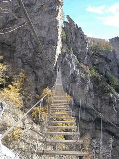 I want to do this so bad!    Gallery - Nelson Rock Outdoor Center, is an outdoor recreation area located in the scenic North Fork Valley of Pendleton County, West Virginia – WV's wildest rock climbing outdoor adventure.